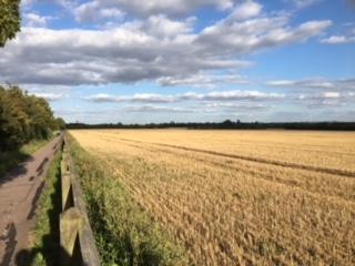 The West Fields