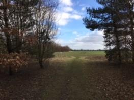 Newnham footpath