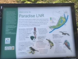 Paradise LNR